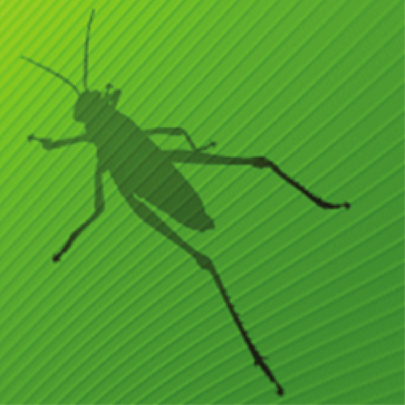 Grasshopper Advanced