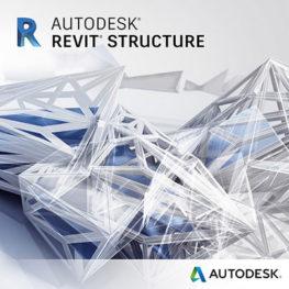 Revit Structure